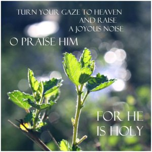 o_praise_him_by_juliabohemian-d4pk775